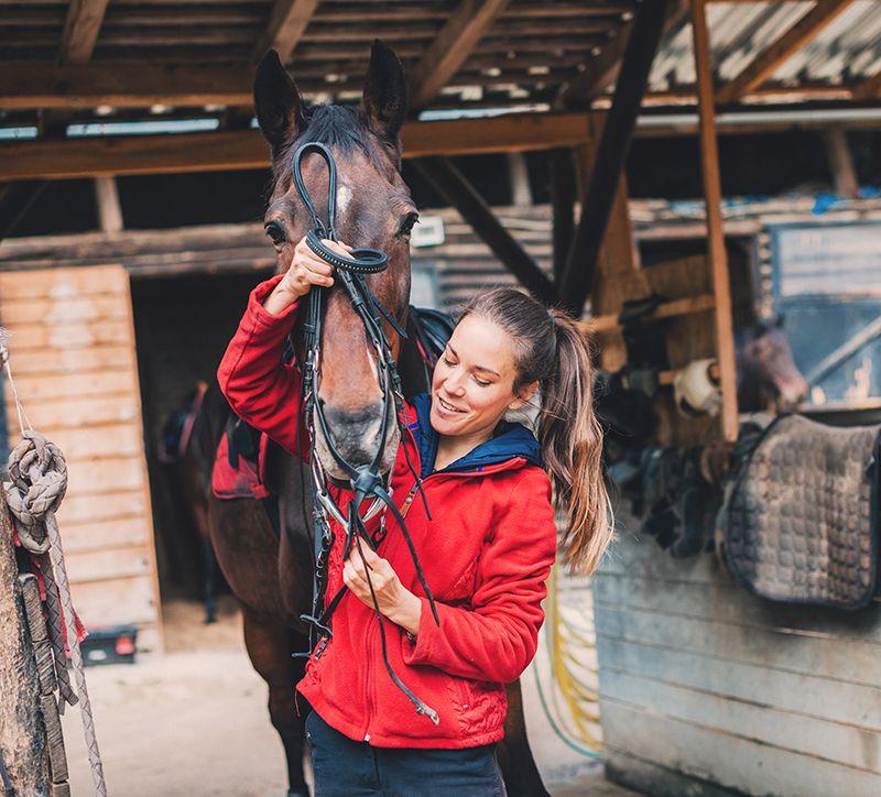 horse-insurance-love.jpg